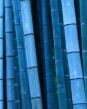 1 Blue Bamboo