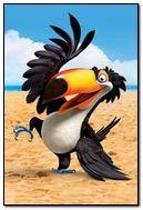 Rio Beach Parrot