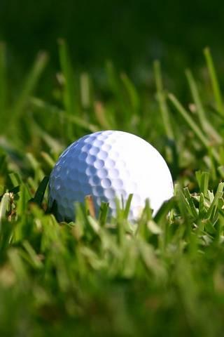 كرة الغولف