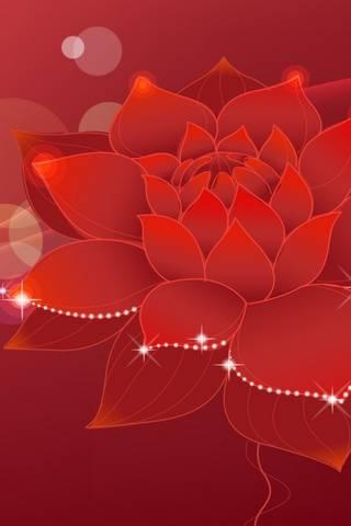 Kırmızı nilüfer