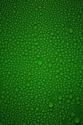 Verde molhado