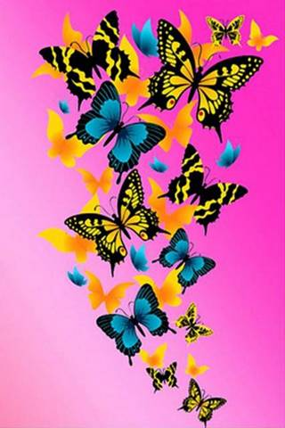 Butterflies On