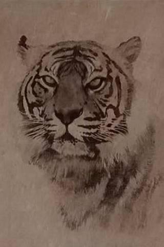 Tiger Sepia
