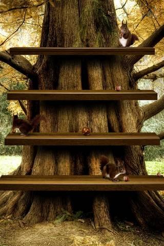 Tree HD