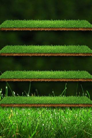Green Gras* Shelf