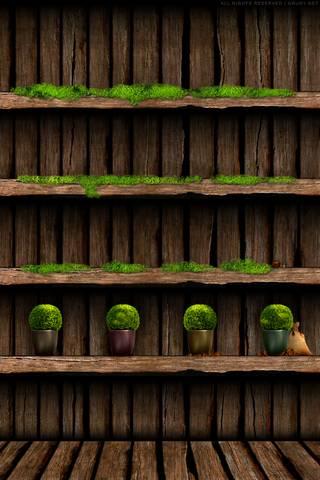 Jungle Shelves