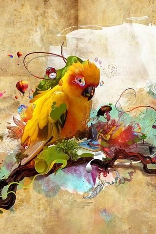 Uccello del paradiso