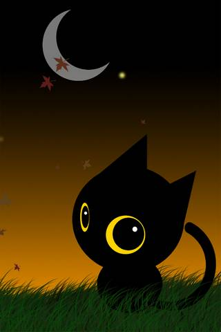 Hallow Cat