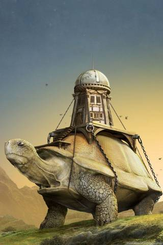 Gaint Turtle
