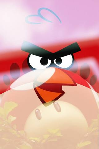 Angry Birds Ft
