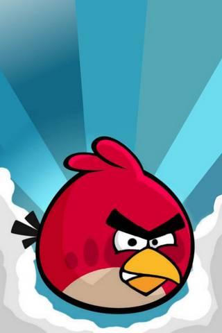 रागावलेले पक्षी