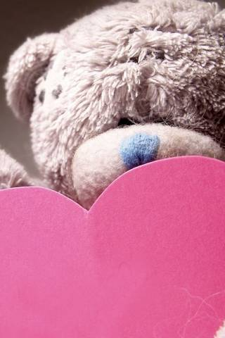 Teddy And Pink