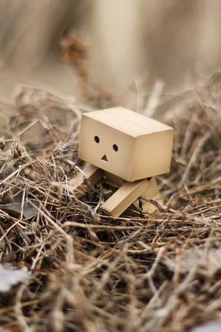 Danbo In A Nest