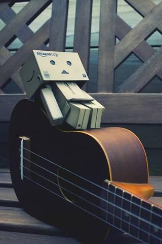 Danbo Guitar