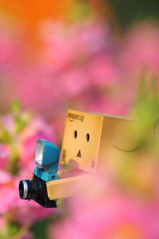 Danbo Lost In T