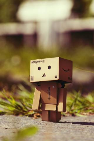 Danbo On Tour