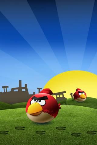 Angry Birds Angry