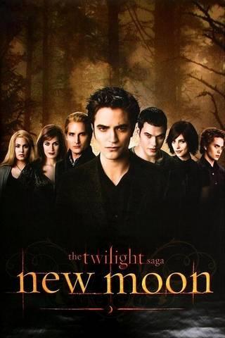 The Twilight Sa