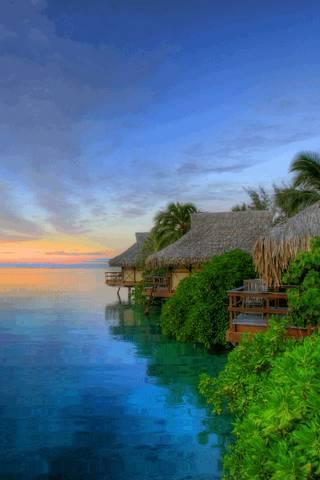 Nature Peace