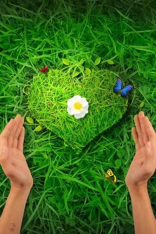 자연 심장