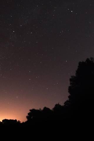 Ніч зірок