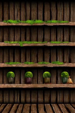 Gras* Bookshelf