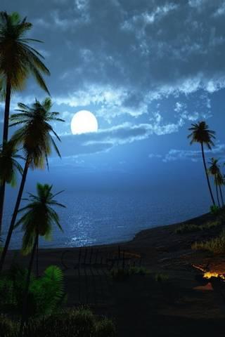 Карибська ніч