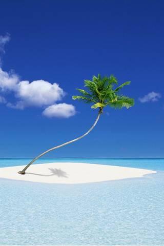 카리브 섬