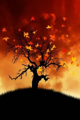 Düşen yapraklar
