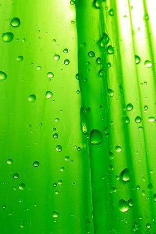 Zielone Krople