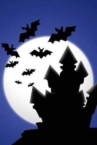 House Of Bats